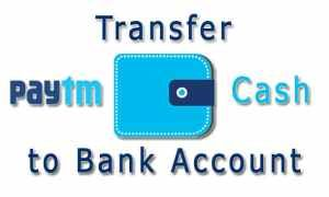 Transfer Paytm Wallet Balance at 0% Charge