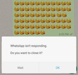 Crash Friends WhatsApp